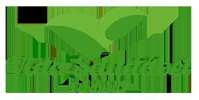logo_verde_final